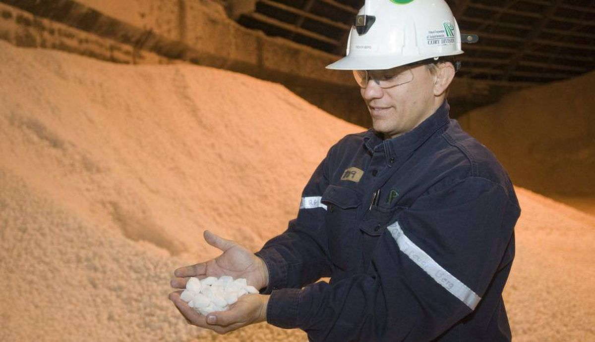 Trevor Berg holds some potash chiclets in a storage building at the Potash Cory mine near Saskatoon