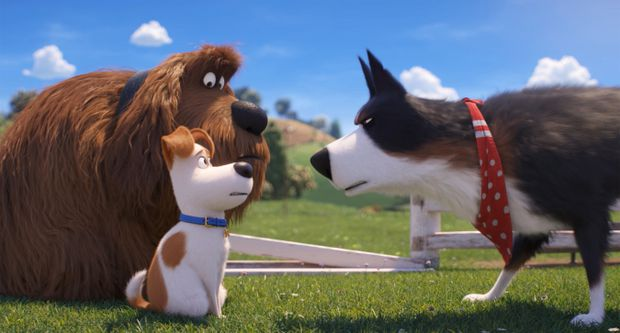 There's not much bite in The Secret Life of Pets 2