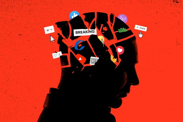 How do our brains fall for disinformation?
