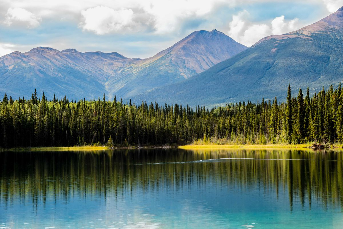 First Nations call on B.C. government to support plan for massive conservation area