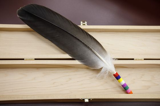 Eagle feathers, like the Bible, now an option for swearing oaths in all Alberta courts