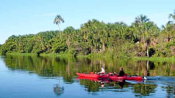 Exploring Venezuela's Orinoco River.