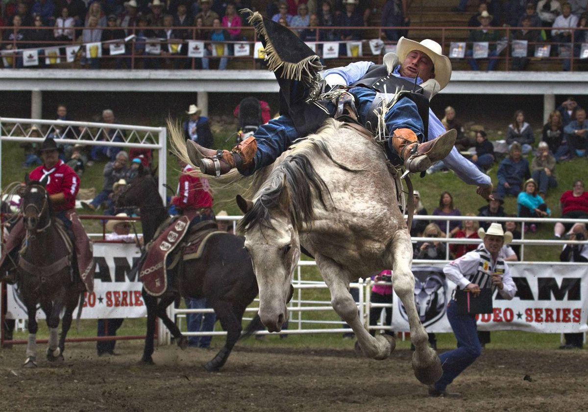 Jake Vold of Ponoka, Alberta rides a bronco during the 94th Annual Falkland Stampede in Falkland, British Columbia May 20, 2012.