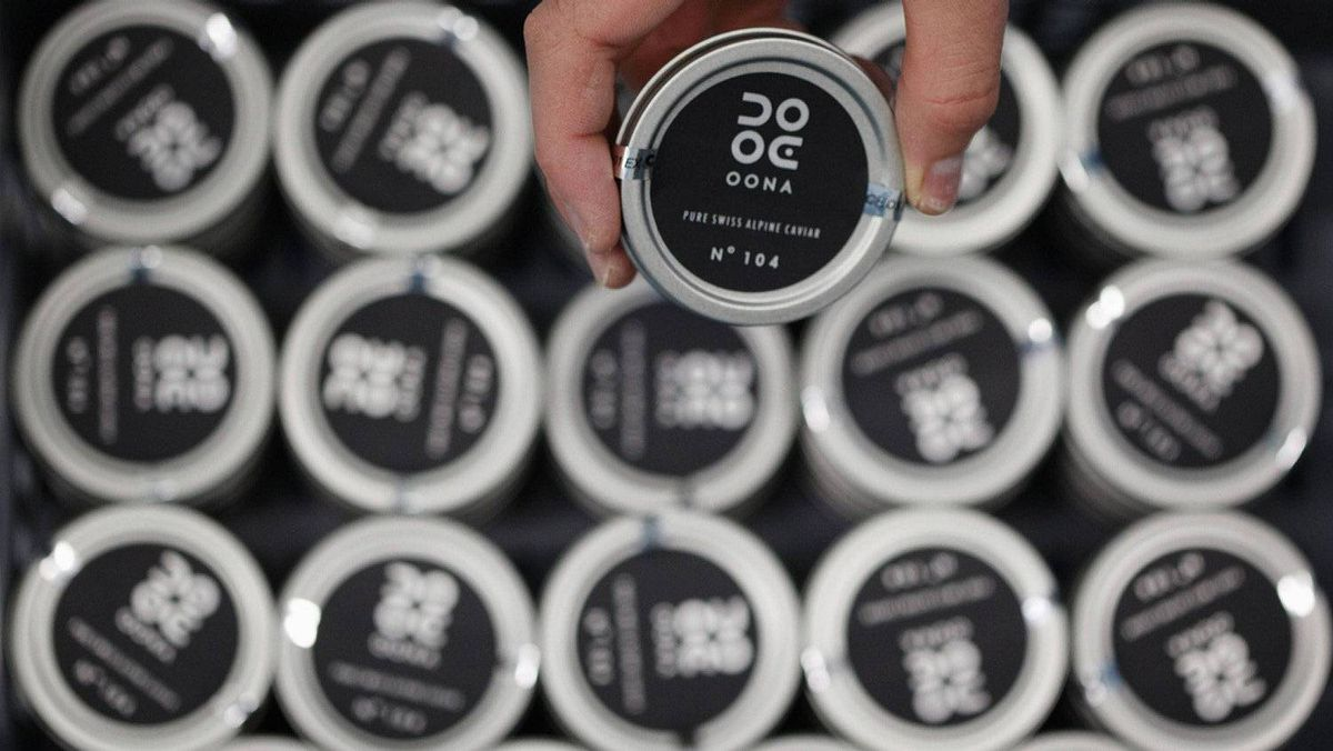 An employee holds up a can of Oona caviar. Switzerland has the second highest proportion of millionaire households in the world, at 9.9 per cent, according to the Boston Consulting Group, and is also one of the world's top consumers of caviar per capita.