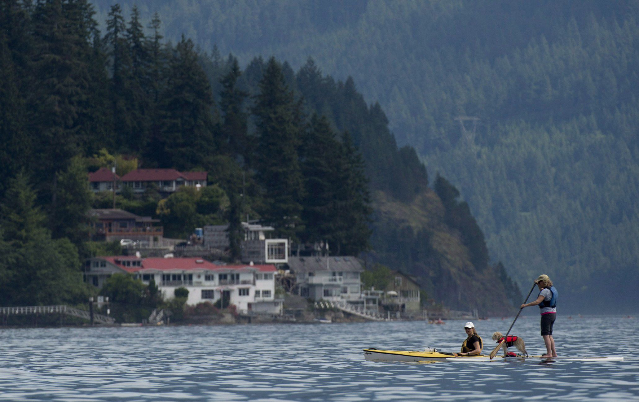 Cottage owners lose battle with B.C. Supreme Court to list properties for short-term rental