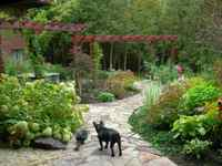 Inside and Out Garden Design