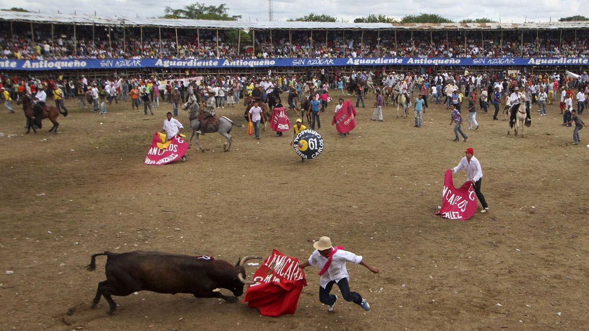 A man challenges a bull during Corraleja, a traditional bullfighting ritual with amateur bullfighters, in Since, Sucre province, September 18, 2011.