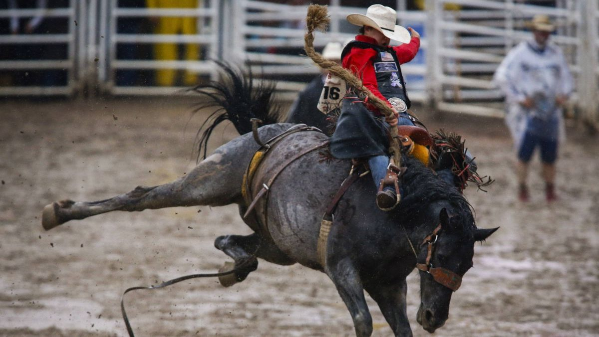 Calgary Stampede Attendance Hits 22 Year Low As Rain Thins