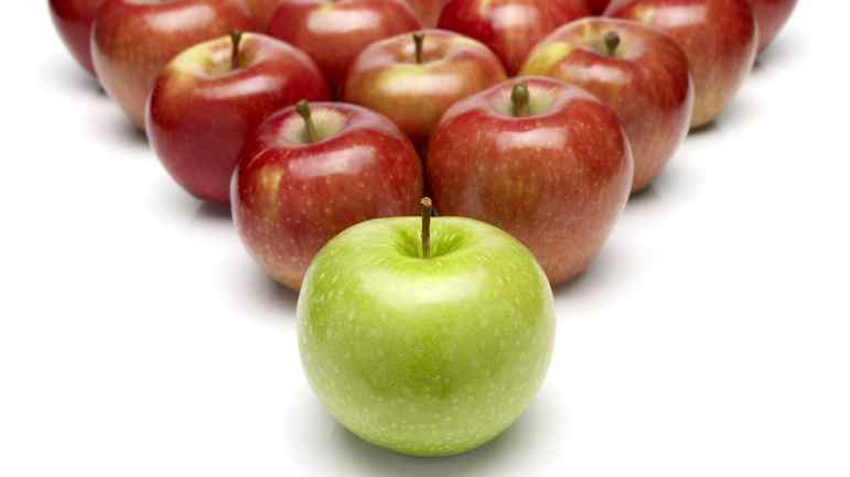 File #: 10705531 Leadership A green apple as a leader at first and lots of red apples as a crowd at background Choosing a leader. Business. apples. Credit: iStockphoto (Royalty-Free) Keywords: Leadership, Apple, Green, Ideas, Fruit, Concepts, Individuality, Red, Organization, Business, Standing Out From The Crowd