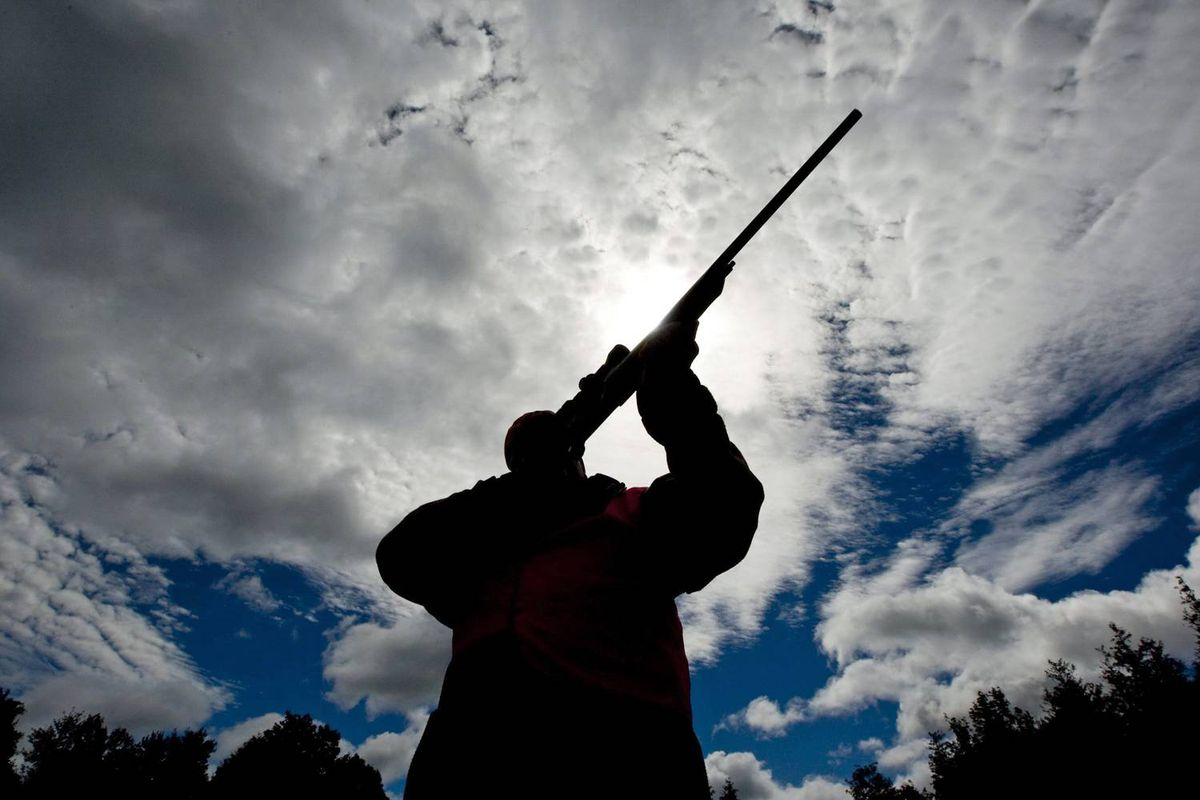 A gun owner checks the sight of his rifle at a hunting camp west of Ottawa on Sept. 15, 2010.