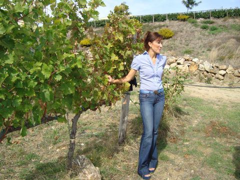 Making wine in the vineyard, not the winery