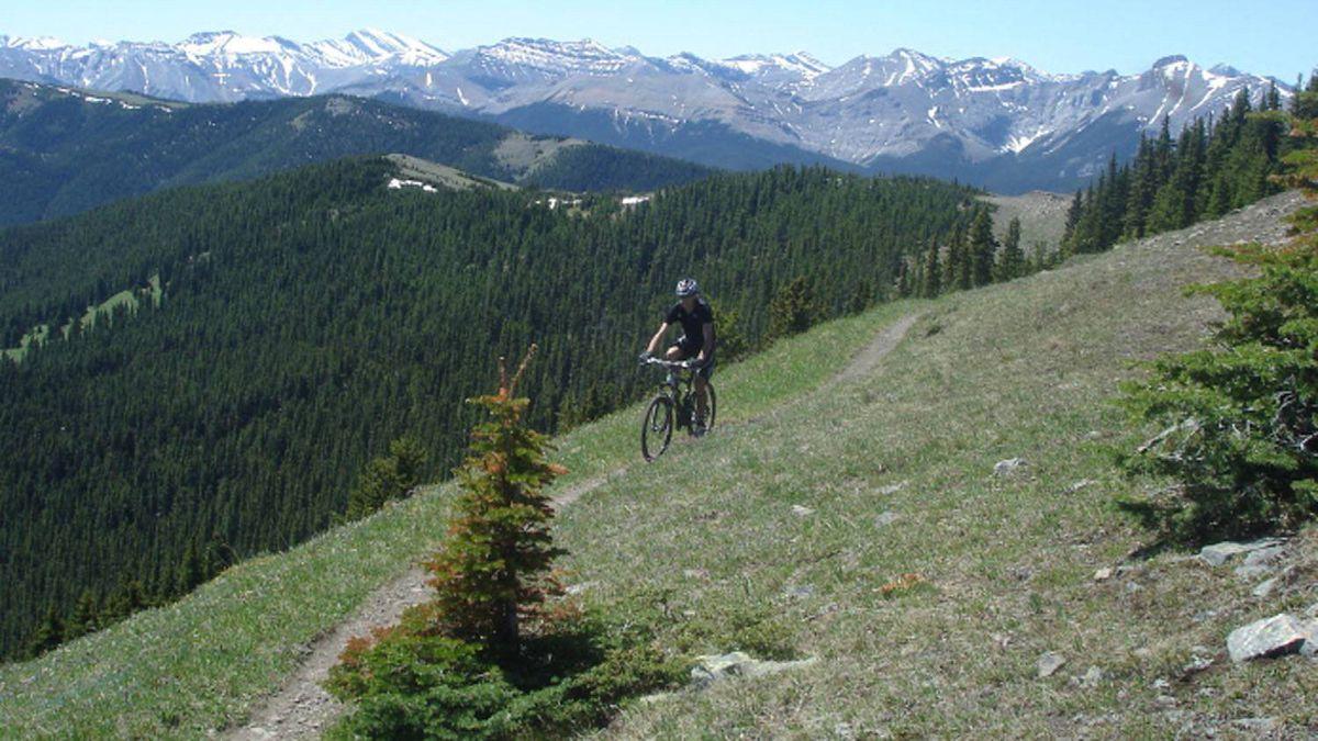 The Cox Hill trail, Kananaskis, Alberta