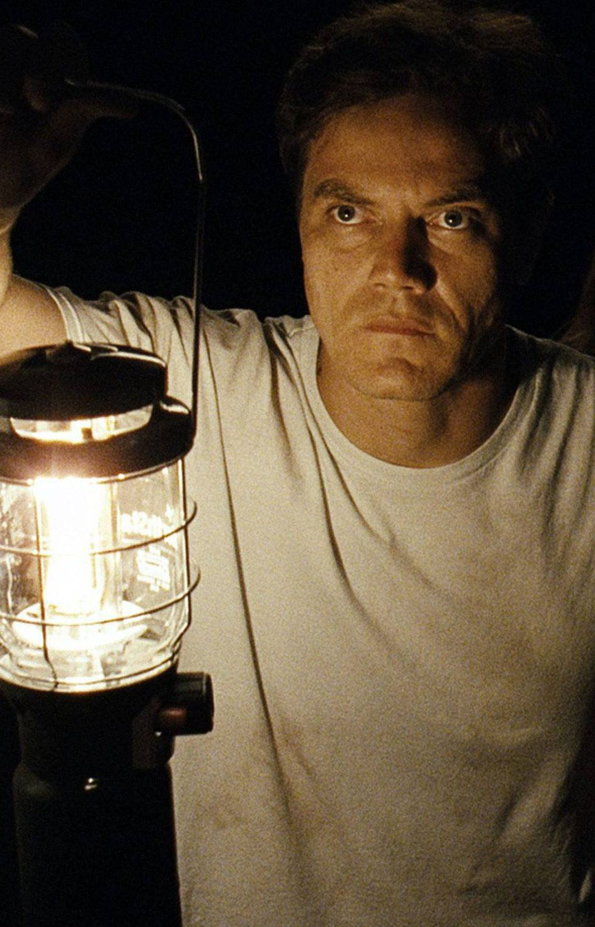 TAKE SHELTER A film that's sounds the right apocalyptic trumpet call at the right time, Jeff Nichols's film features a haunting performance by Michael Shannon as an Ohio construction worker afflicted with fearful visions of a tempest that will destroy all he holds dear.