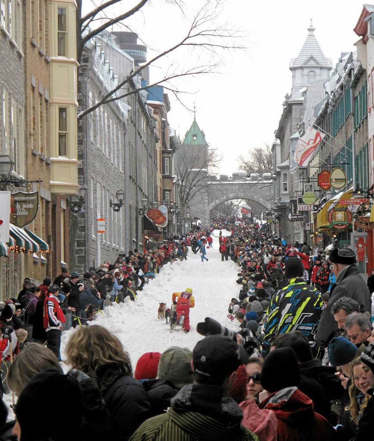 Crowds gathered to cheer on the dogsled racers on the opening weekend of Carnaval in Quebec City. You can have your own dogsledding experience on the Plains of Abraham.