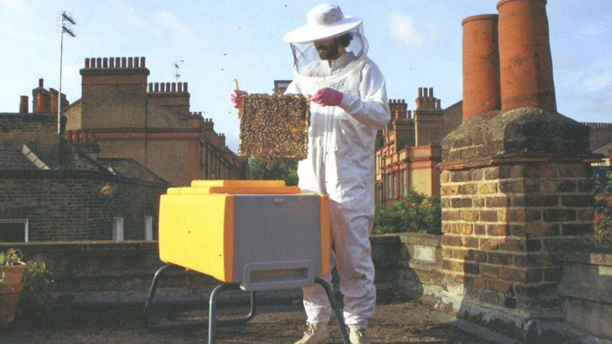 The Beehaus, a modern beehive developed by the design firm Omlet in use on a London roof.