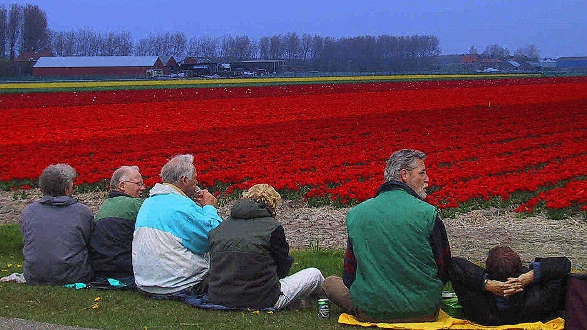 Make like a local: Take a bike excursion to drink in fields of flowers.