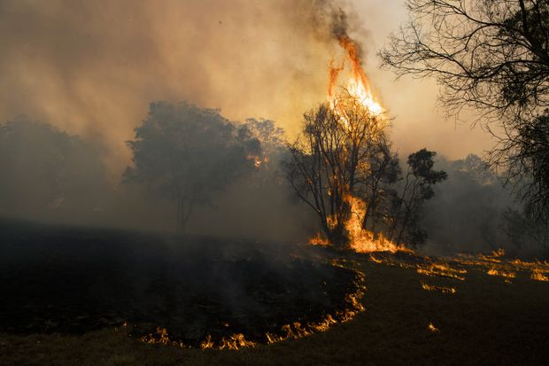 Canadian Firefighters Will Miss Christmas To Help Fight Australian Bushfires