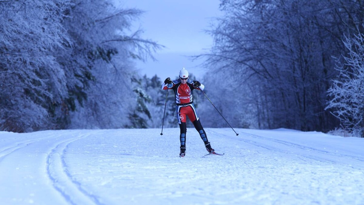 David McMahon sent us this photo of two-time Olympian Lise Meloche, cross country skiing in the Gatineau Park after a recent snow-storm