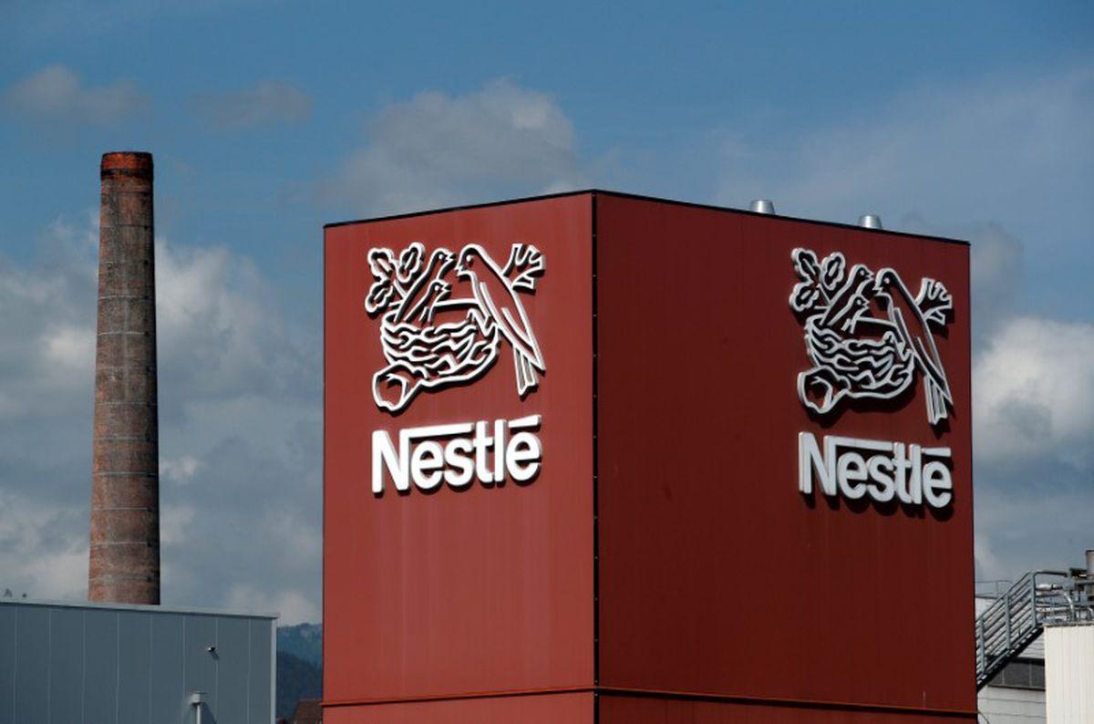 Nestl Sets Sights On Edmontons Champion Petfoods Amid Criticism