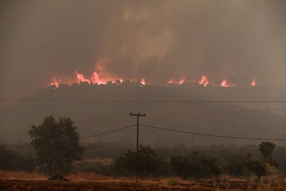 Three villages evacuated as wildfire burns Greek island nature reserve