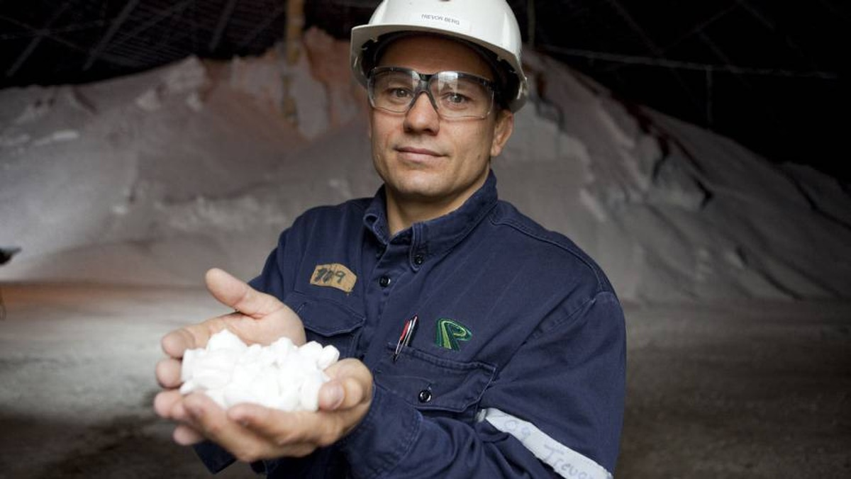 Potash Corp mill general superintendent Trevor Berg holds a handful of chicklet potash inside a potash holding facility at the Cory mine facilities near Saskatoon on August 19, 2010. Potash is one of three key global crop inputs, along with phosphate and nitrogen. Potash Corp. is the world?s largest producer of potash.