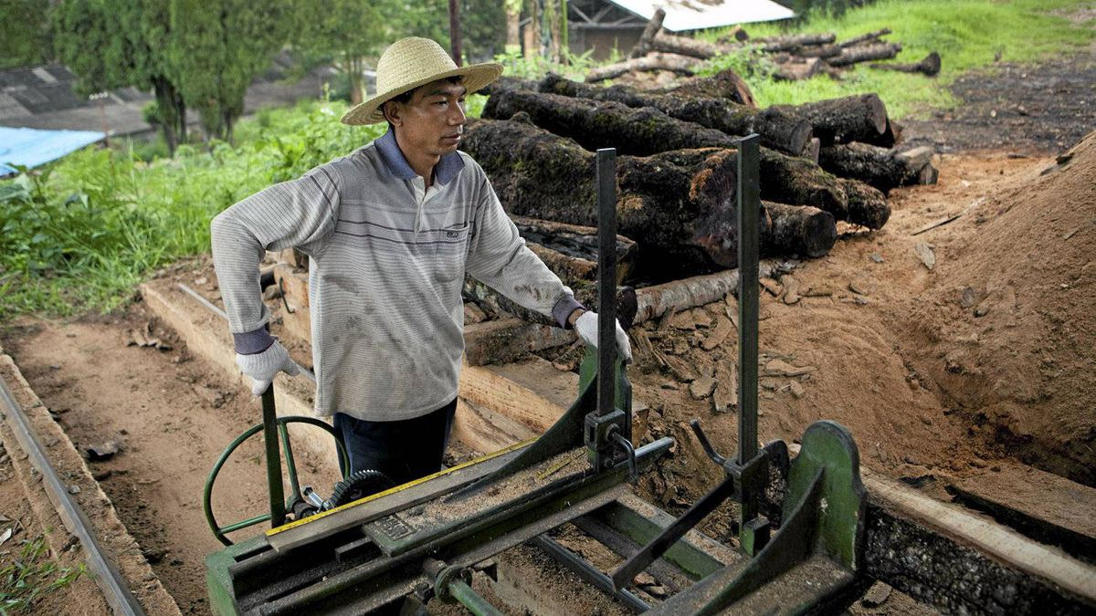 Lumber workers process Yunnan pine at the Gengma Forest Product Corp. Ltd. lumber yard in Gengma, Yunnan Province, China, on June 10, 2011. Sino-Panel, a subsidiary of Sino-Forest, purchased forest land from Gengma Forest Product Corp. Ltd. and used the processing factory.