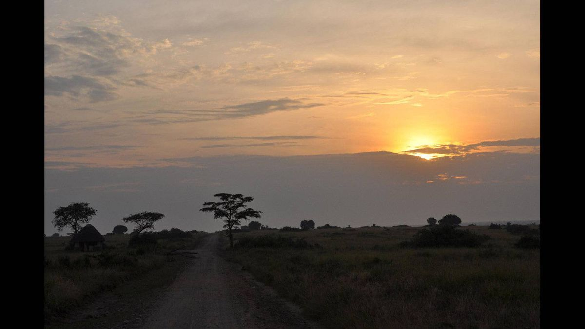 Lydia Guo photo: Sunrise over the savannah - The sun peeks through the clouds in an early morning game drive in Uganda's Queen Elizabeth National Park. This was taken on my safari last weekend.