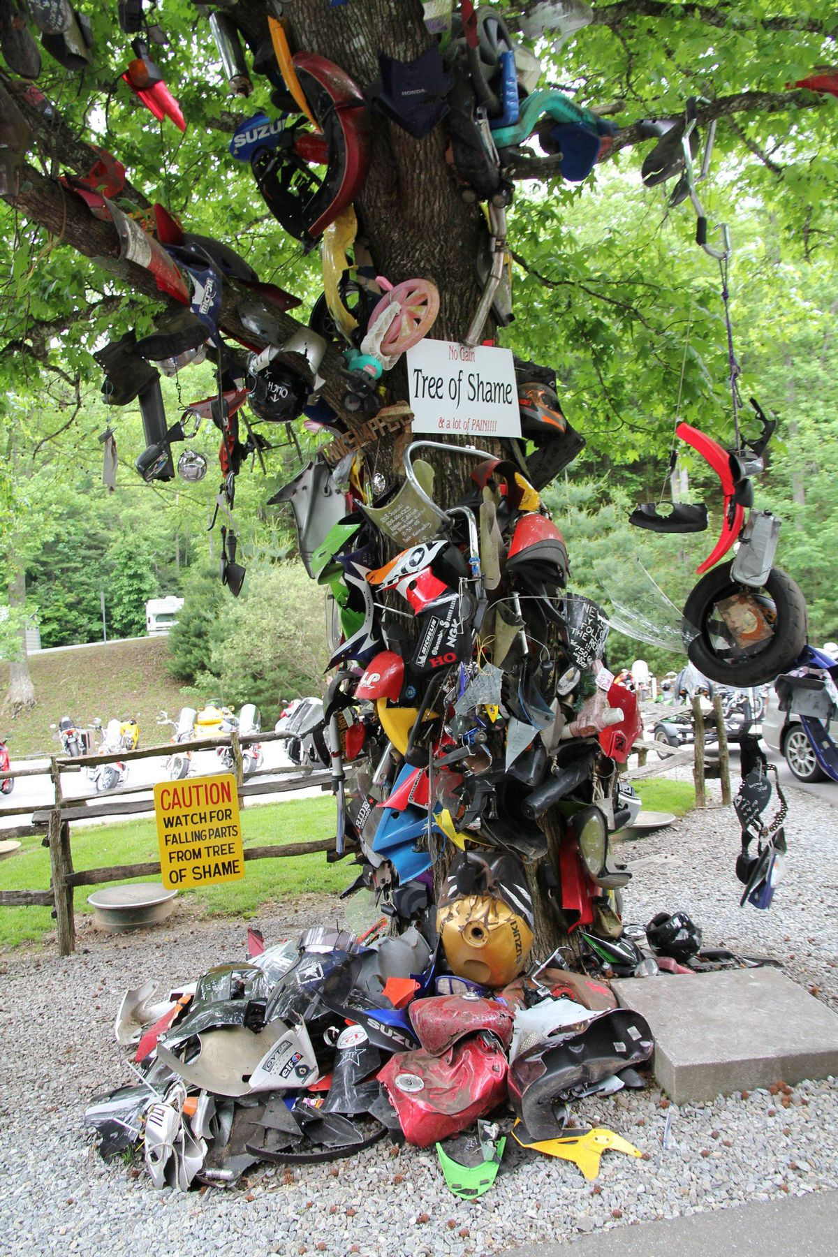 The Tree of Shame at Deals Gap, North Carolina. Riders who crash on the famous road known as The Tail of the Dragon commemorate their mishap by hanging wreckage on the tree. Many sign the shattered parts.