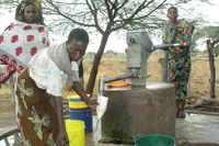 Rural water supply and sanitation project in Tanzania, which ran from 2003 to 2006, in which Cowater International was involved. Cowater has done projects in 20 African countries.