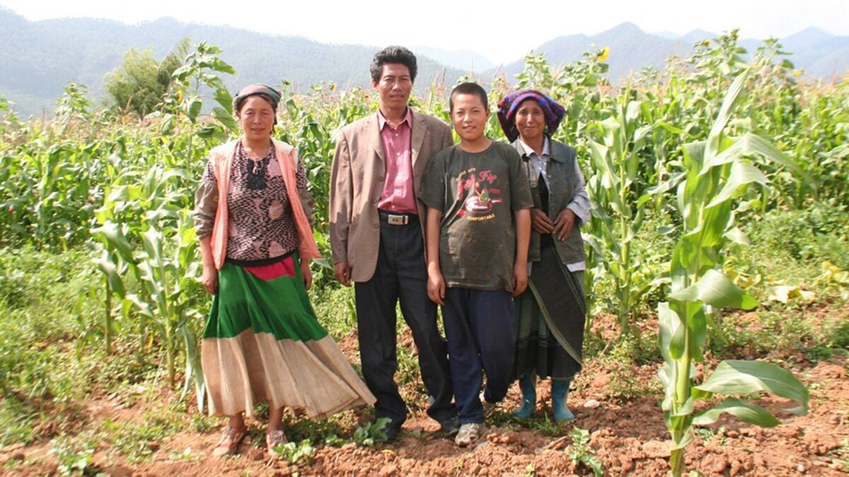 An Zhashi (second left) and his family, standing in the corn field behind his house in Anjia.