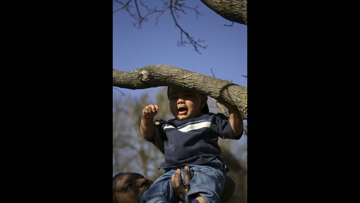 Karen Mason-Bennett photo: Hanging Around - A day at the park when our son was 6-months old. March 2006.