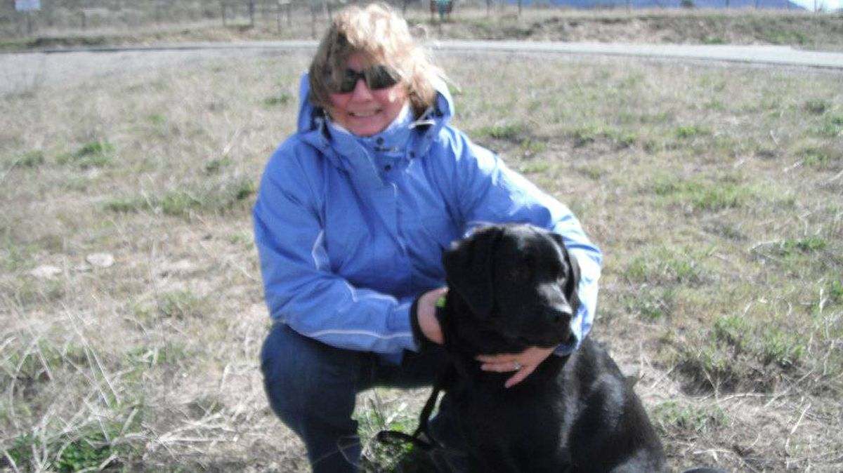 From Dawn Griffin in Fort St. John, B.C: This is our new black labrador Drake. He was 7 months old in April and this is a picture the day we dropped him off at bird retriever school near Oliver. He misses his mother!