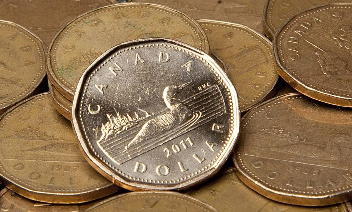 Canadian dollar coins.
