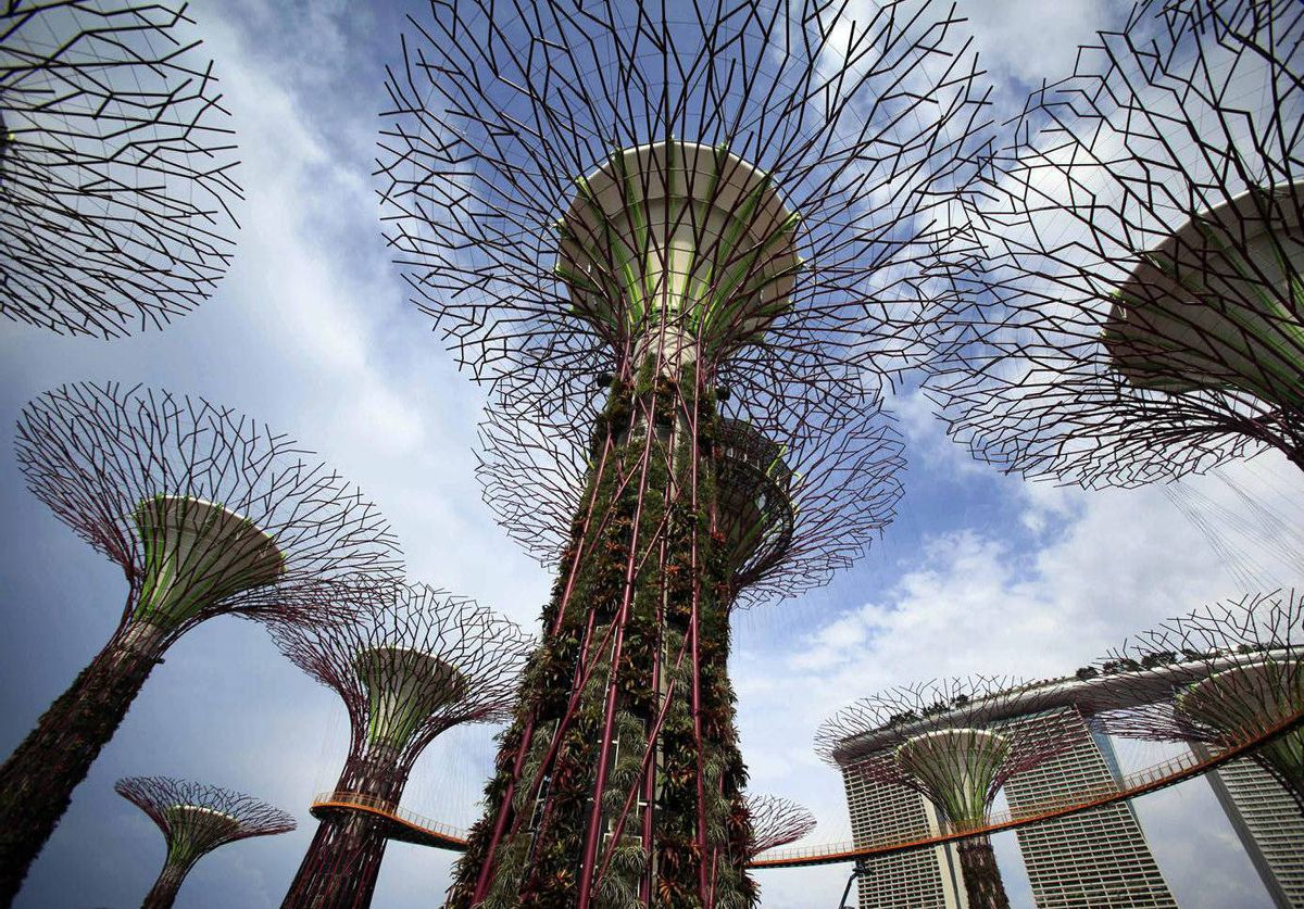 Supertrees which serve as vertical gardens stand tall in the almost completed Gardens by the Bay, with the Marina Bay Sands hotel towers in the background, in Singapore. It is part of an effort to nurture greenery within the city.
