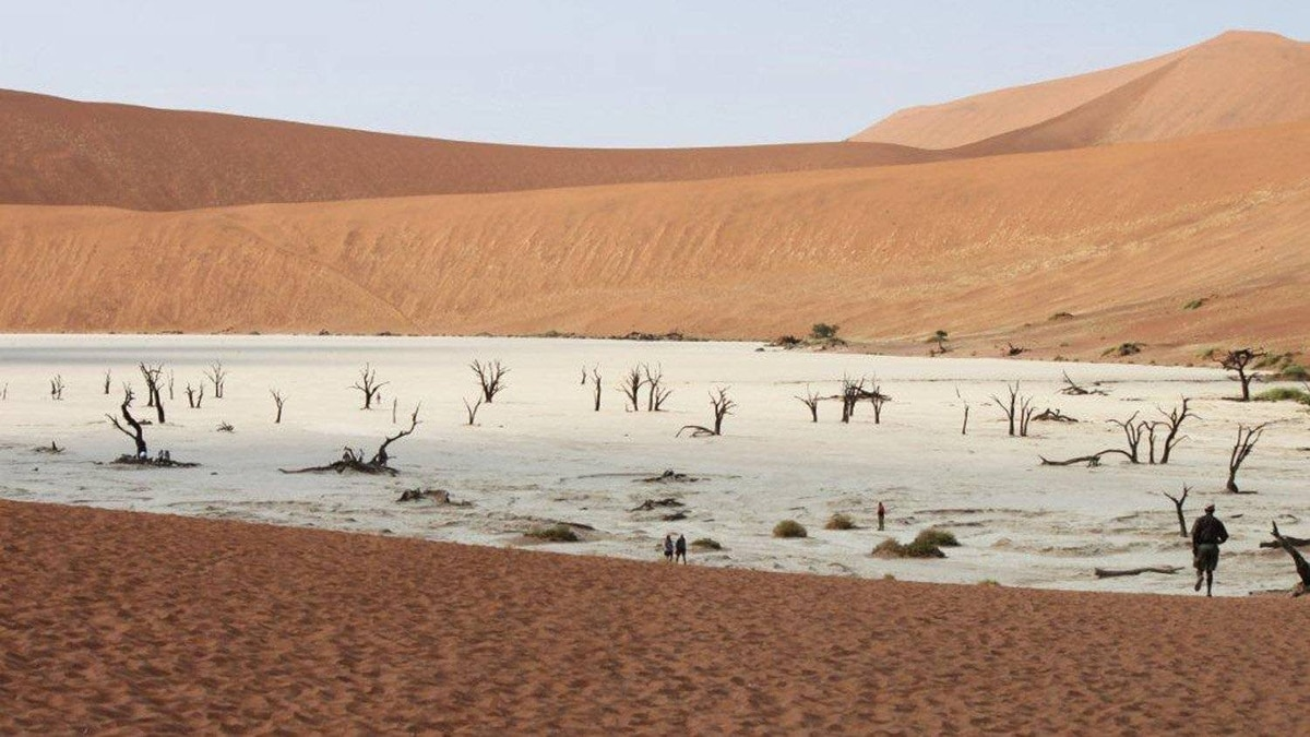 "Susan Lychak, Penticton, B.C.: Sossusvlei, in the Namib-Naukluft Park, Namibia. It is an area called ""deadvlei,"" meaning ""dead well/water,"" and was formed approximately 800 years ago by the ever-moving sand dunes, cutting off the flow of water."
