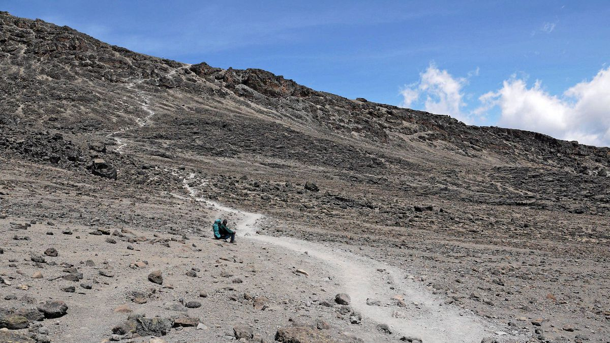At 5,895 metres, Mount Kilimanjaro is the highest point in Africa.