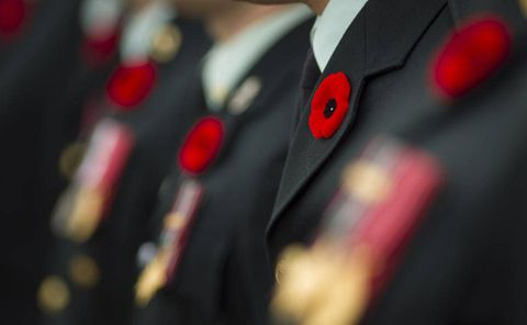 Defence Minister calls military suicides 'troubling' as third case reported at CFB Petawawa