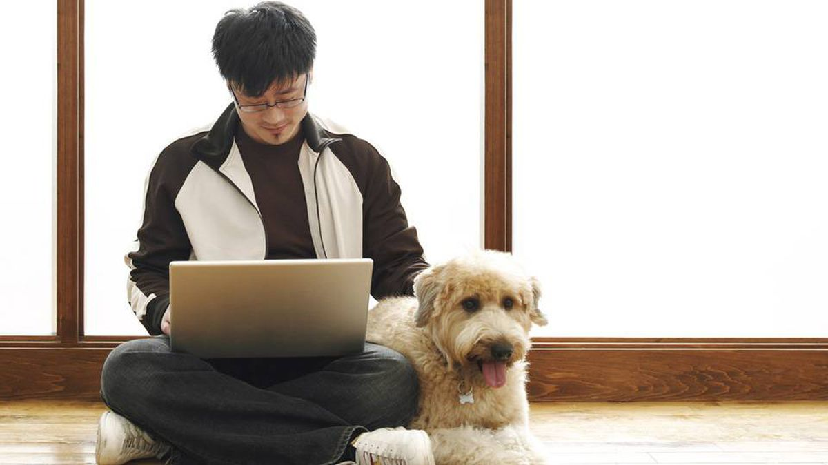 At Softchoice Corp., an IT services business based in Toronto, it's important that potential employees be a people person, if not a dog person.