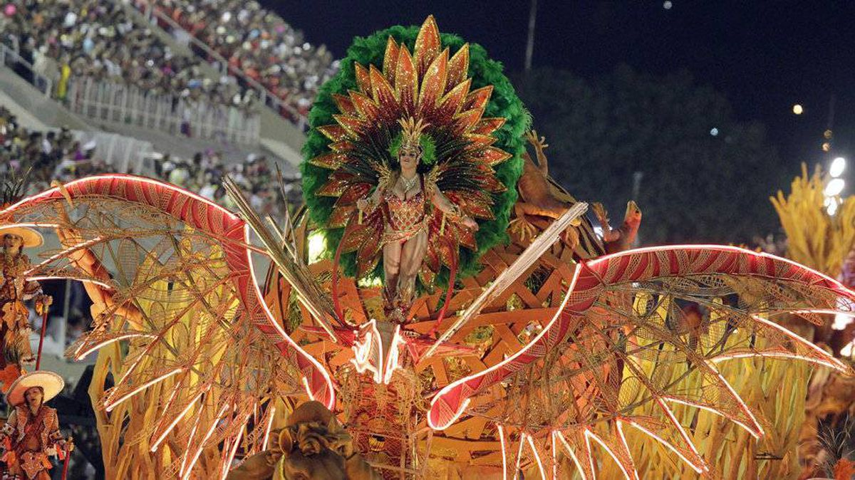 A reveller from the Salgueiro samba school takes part in a parade on the second night of the annual Carnival parade in Rio de Janeiro's Sambadrome, February 20, 2012.