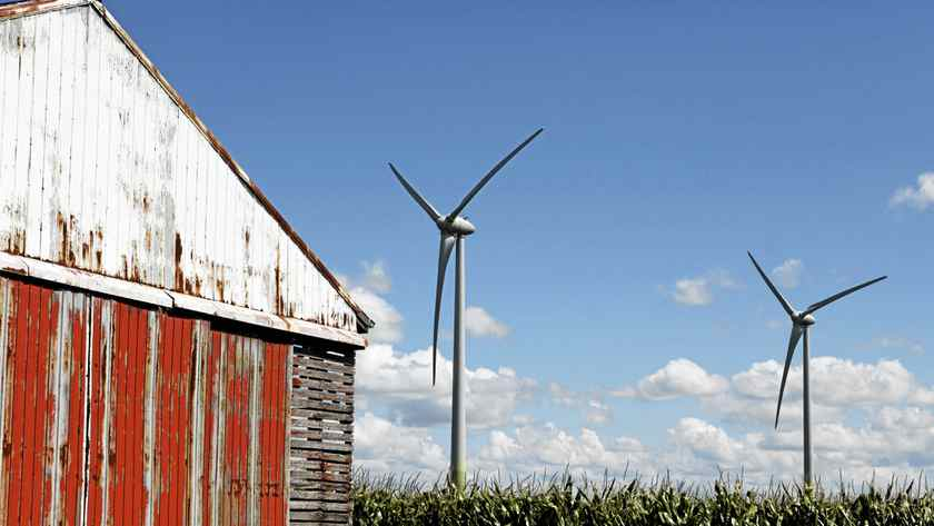 A wind farm is pictured in Chatham-Kent, Ont., Aug. 28, 2011. Wind farms are a politically sticky issue in the province.