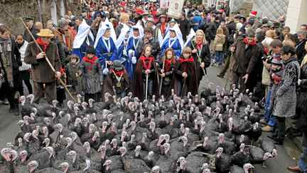 Fête de la Dinde, France: From Dec. 10 to 12, the best-looking of Licques's famously tasty turkeys are paraded through town to the abattoir. They'll be served at a dinner-dance capping this 20-year-old festival and food market in northern France.