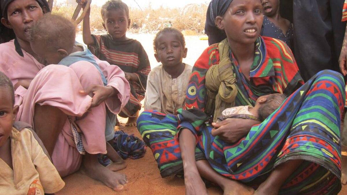In Dadaab, along the Kenya-Somali border in East Africa