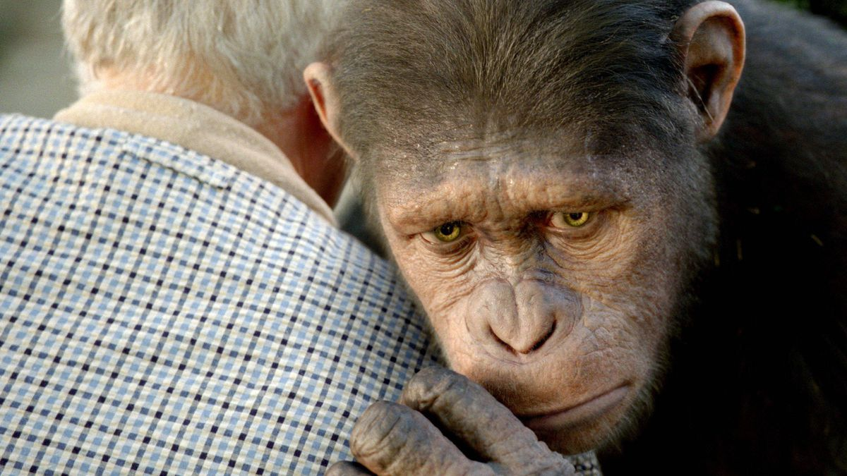"""In this image released by Twentieth Century Fox, Caesar the chimp, a CG animal portrayed by Andy Serkis is shown in a scene from """"Rise of the Planet of the Apes ."""""""
