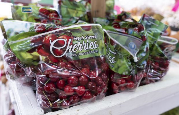 EU set to halt imports of Canadian cherries, other fruits: document
