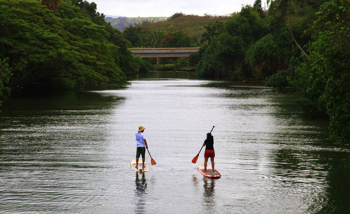 Lee Gunderson sent us this photo taken on Anahulu Stream, Oahu. He writes, This couple found their quiet passion. They both have each other, they get exercise. No pollution and they get a sightseeing tour every time they get out. Cool and relaxing sport.