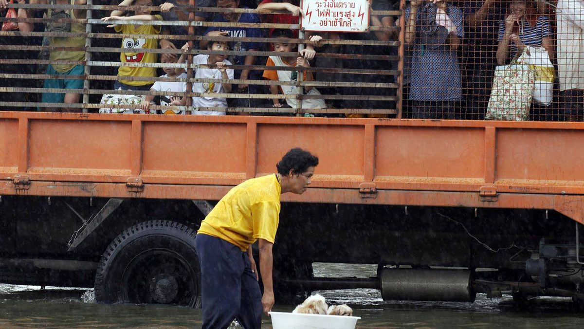A man pushes puppies in a plastic container as residents are evacuated in a truck from a flooded area in Bangkok's suburbs on Oct. 20, 2011.