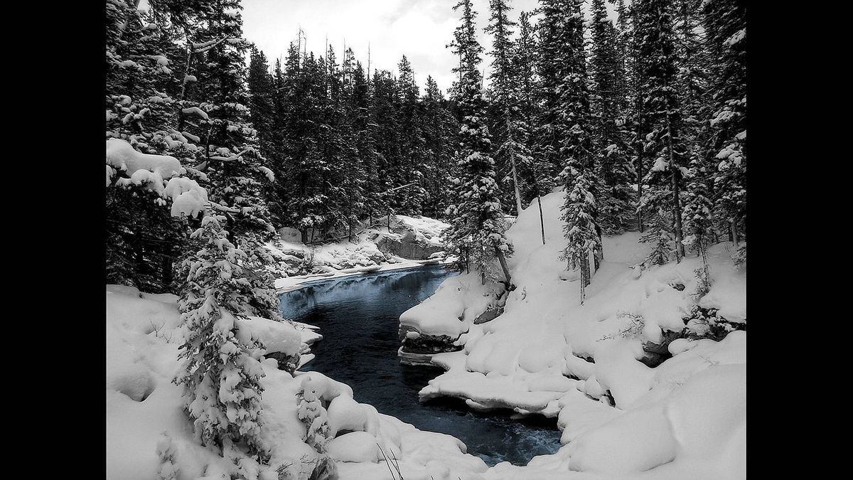 Jordan Nixon photo: Bryant Creek, Banff National Park - This is the backcountry ski trail, Bryant Creek, near Mount Shark in Banff National Park.