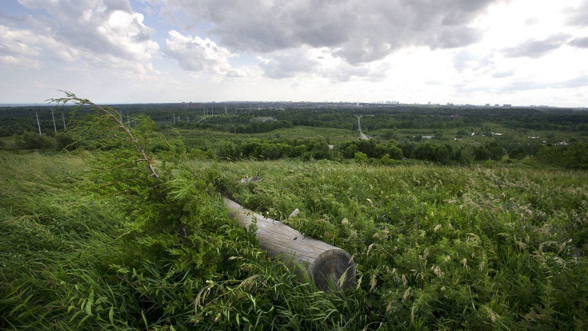 The Rouge Valley is seen from Beare Hill in Scarborough, Ont. June 28/2011. The hilltop is the site of a former landfill.