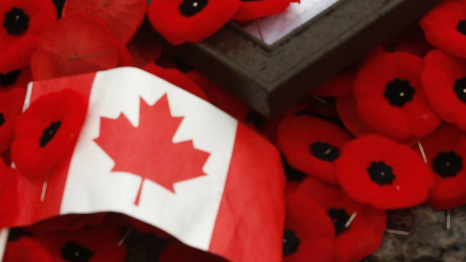 remembrance day ceremonies from across canada the globe and mail