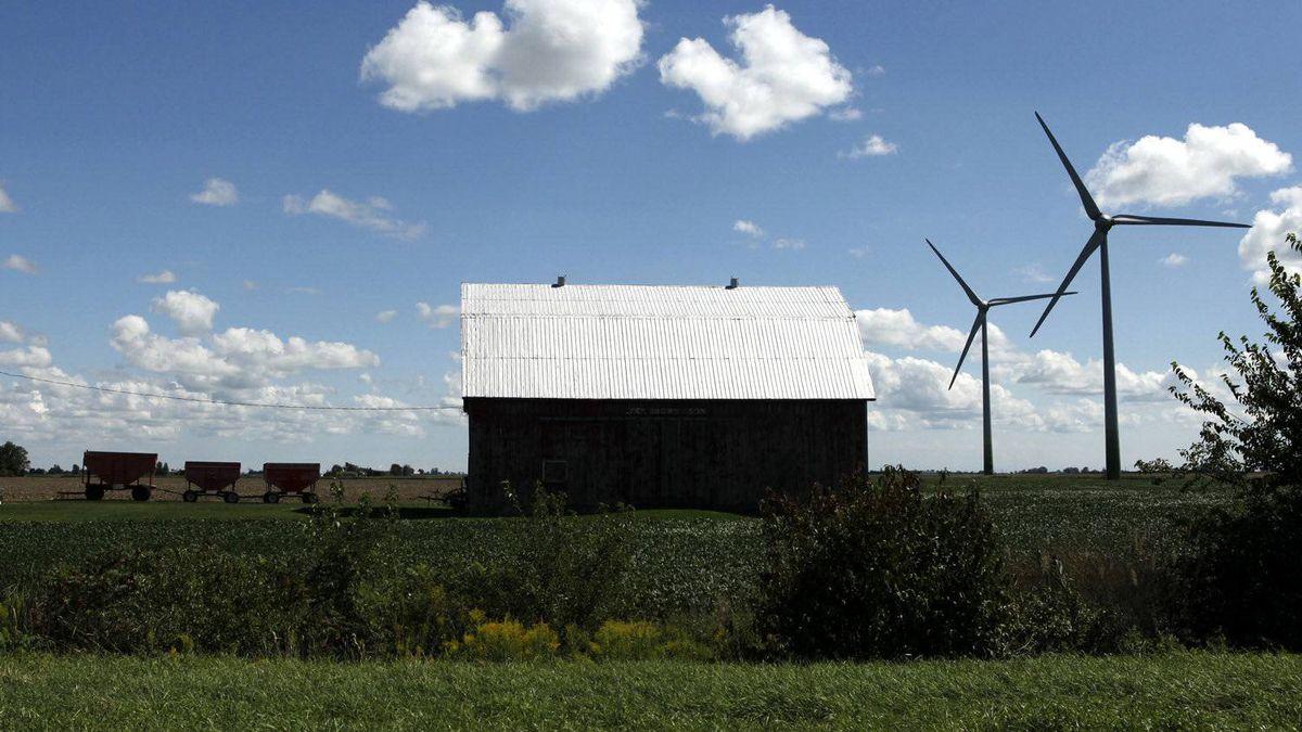 A wind farm in Chatham-Kent near Mitchells Bay, Ont.